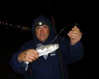 Photo of small bass