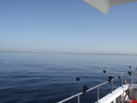 Picture of flat sea from aboard Grey Viking II