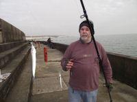 Brace of small herring