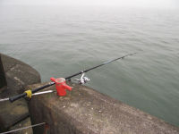 Lazy way to get herring