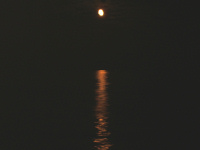 Moonshine - click for larger image