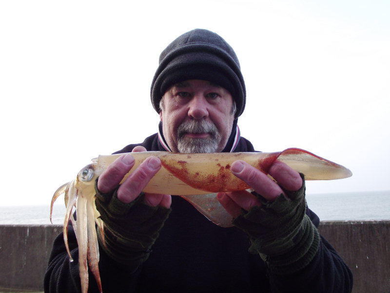 First squid of 2012_6933857022_l